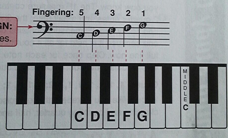 2. 低音谱表